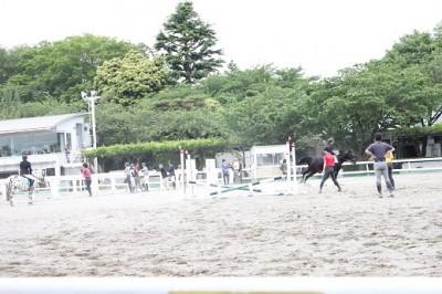 馬事公苑馬術競技場