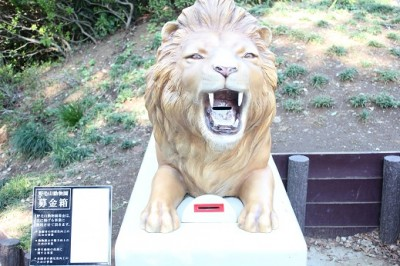 野毛山動物園募金