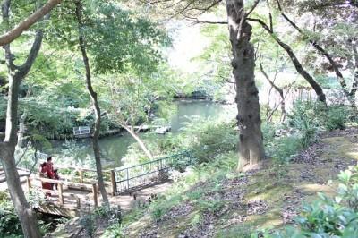 野毛山動物園の池