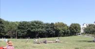 アスレチック広場の芝生と青空