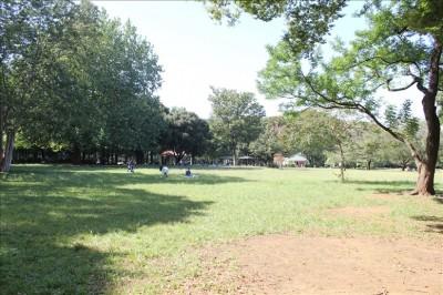 ねむの木広場の様子