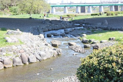 兵庫島公園人口小川