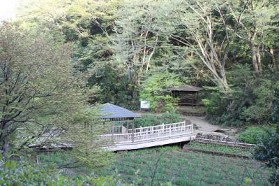 生田緑地入口付近
