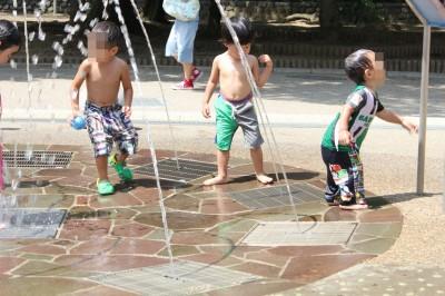 生田緑地の水遊び