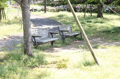 栗山近隣公園のベンチ