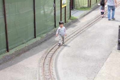 お山のポッポ鉄道を歩くペン太