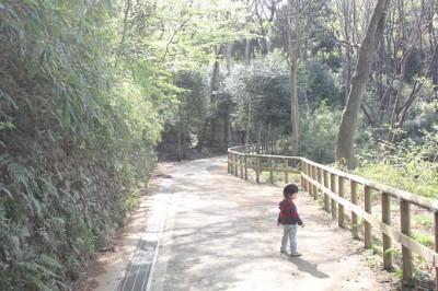 生田緑地ハイキング