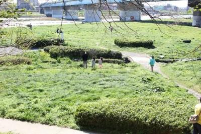 兵庫島公園丘から撮影