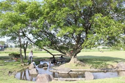 せせらぎ公園-水遊び風景
