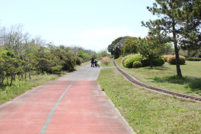 蓮沼海浜公園 こどものひろばへ向かうところ