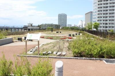 二子玉公園広場