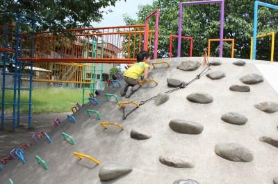稲田公園-石山を登る息子2