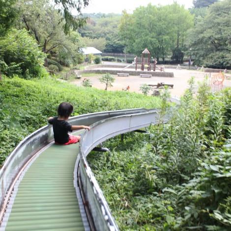 三ツ池公園-ロングローラー滑り台2
