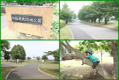 稲城北緑地公園-風景