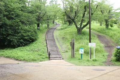 こども自然公園-桜山登り口