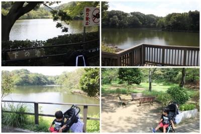 三ツ池公園-池