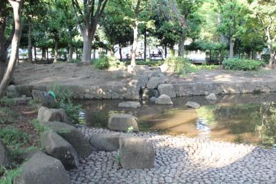 橘公園-せせらぎ広場の池