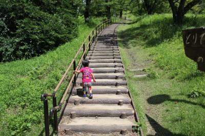 こども自然公園-桜山階段
