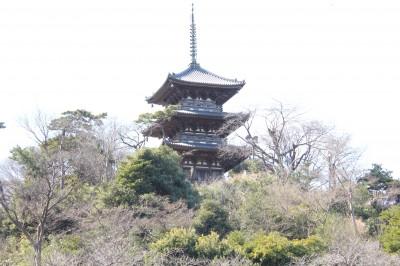 三溪園-三重の塔
