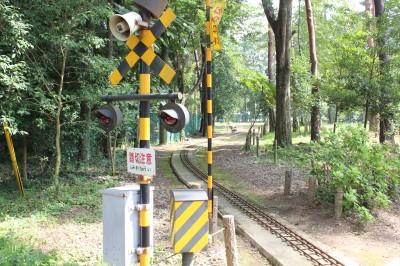 佐倉草ぶえの丘のミニ鉄道の線路