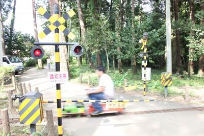 佐倉草ぶえの丘のミニトレイン試運転