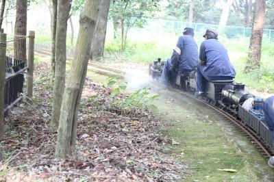 ミニ蒸気機関車 佐倉草ぶえの丘