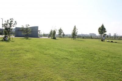 新横浜公園-草地広場