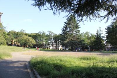 美しが丘公園ー広場