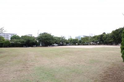 行徳駅前公園-芝生広場