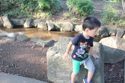 橘公園-せせらぎの石のベンチ