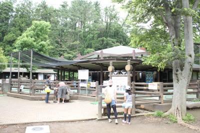 こども自然公園-万騎が原ちびっこ動物園