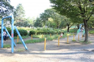 美しが丘公園ーターザンロープ