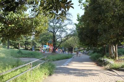 美しが丘公園ー散歩道