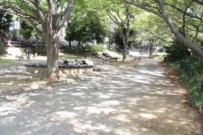 三ツ池公園-頂上の公園