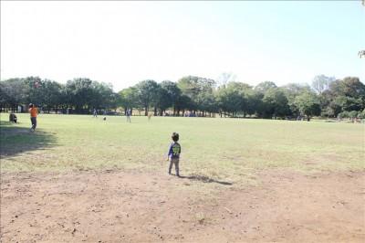 広い芝生の広場ひょうたんはらっぱ-岸根公園