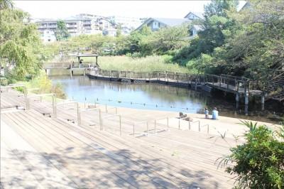 なごむ池-岸根公園