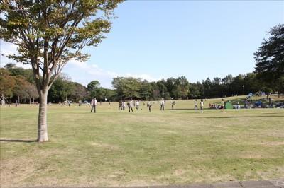 里山公園の芝生の広場