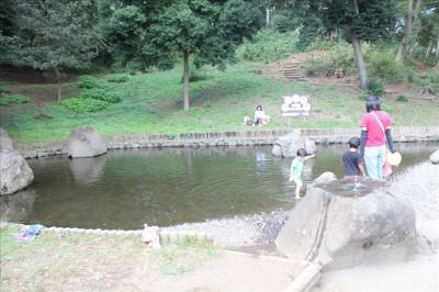 里山公園の池