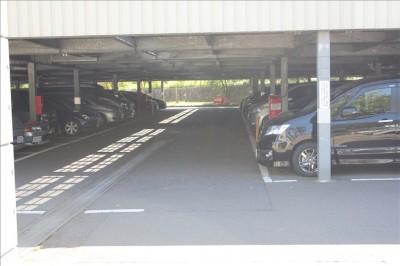 駐車場は休日は混雑-岸根公園