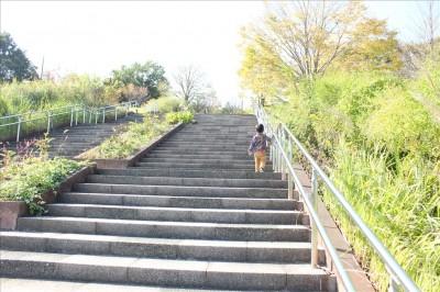 ロングローラー滑り台出発地点への長い階段