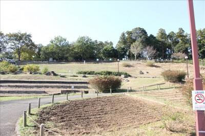 野草園見晴らしの丘-荻野運動公園