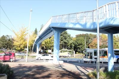 第三京浜道路をまたぐ横断歩道