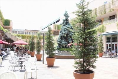 食事ができるトレッサ横浜の中庭