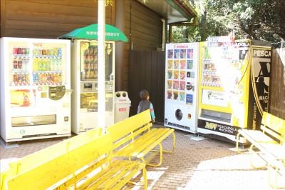 町田リス園内にある自販機(ジュース、アイスクリーム)