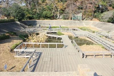 水性植物園