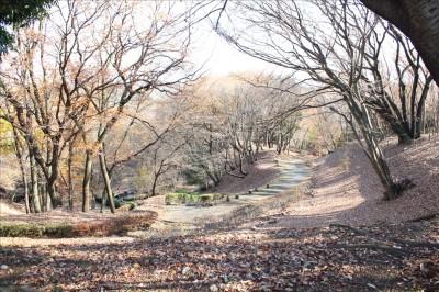 稲城中央公園の散歩道