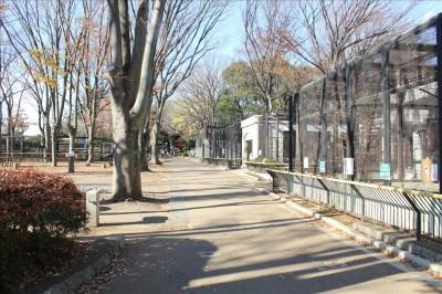 夢見ヶ崎動物園入口付近の様子