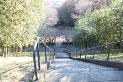 多目的広場への長い階段