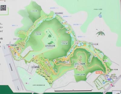 東高根森林公園案内図