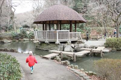 ケヤキ広場の休憩所と池